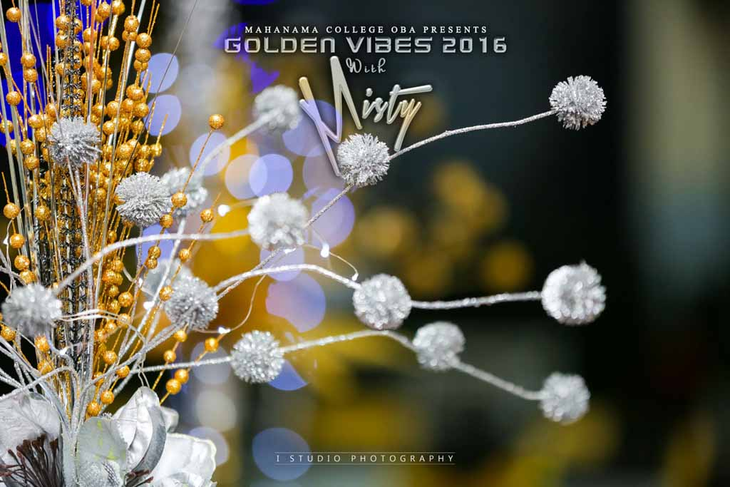 Golden Vibes 2016_12