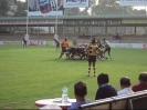 Rugby Team_13